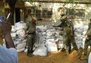 KEDOUGOU : La douane saisit  plus d'une tonne   de '' Yamba'' d'une valeur de 173 millions de FCFA