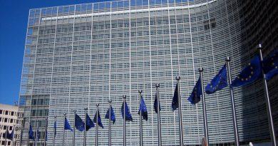 TURQUIE DANS L'UE : Des parlementaires français s'opposent frontalement