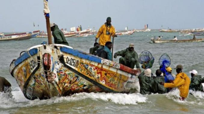 THIAROYE  SUR MER : Le CAPS à la rescousse de la pêche